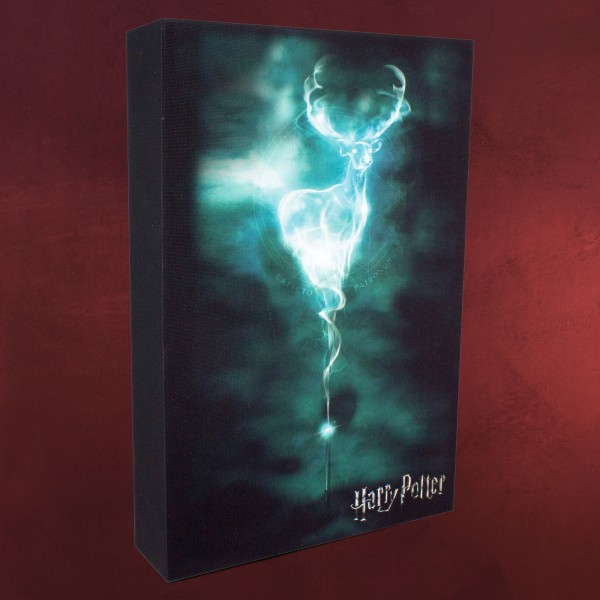 harry potter patronus wandbild mit licht elbenwald. Black Bedroom Furniture Sets. Home Design Ideas