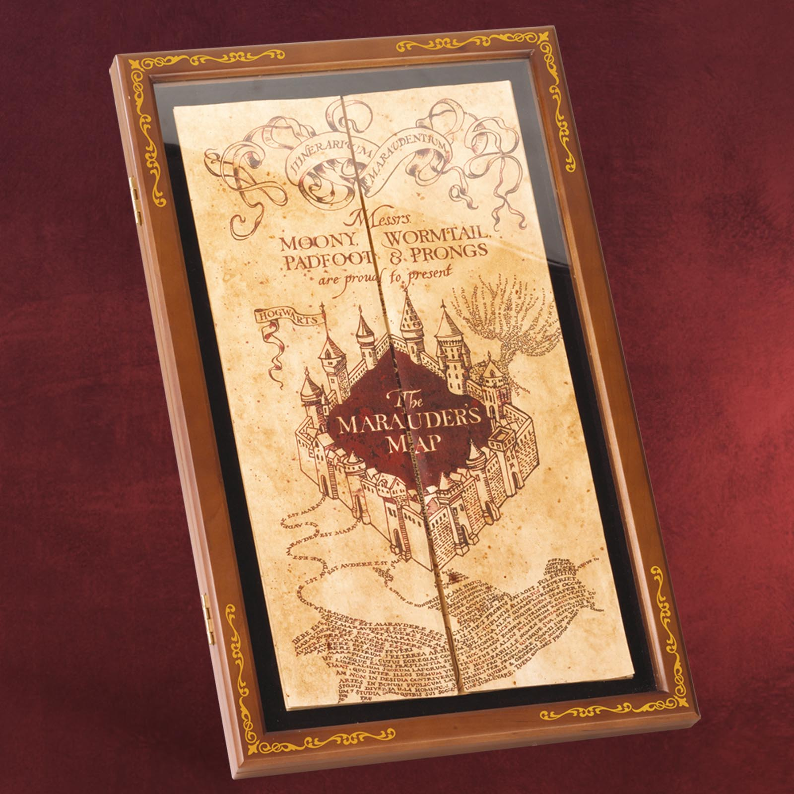 Die Karte Des Rumtreibers Inklusive Display Harry Potter