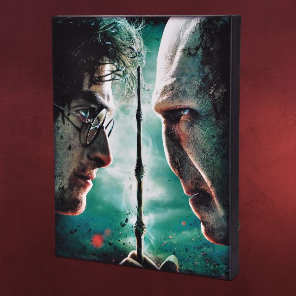 Harry Potter - Harry vs. Voldemort Wandbild mit Licht