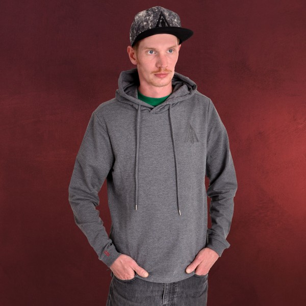Assassins Creed - Odyssey Logo Hoodie grau