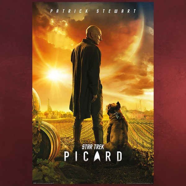 Star Trek - Picard Maxi Poster