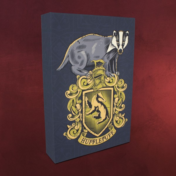 Harry Potter - Hufflepuff Wandbild mit Licht