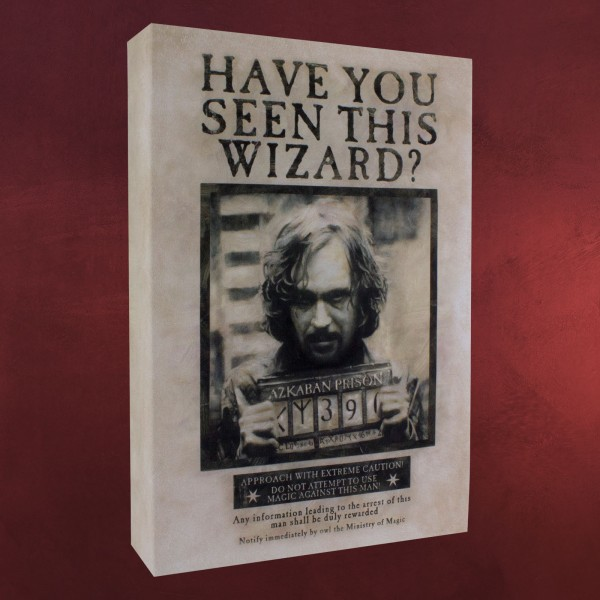 Harry Potter - Wanted Sirius Black Wandbild mit Licht