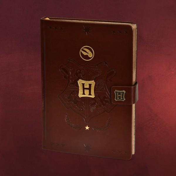Harry Potter - Hogwarts Quidditch Premium Notizbuch A5