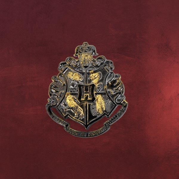 Hogwarts Anstecknadel