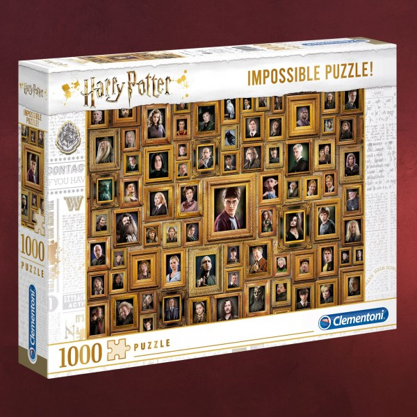 Harry Potter - Impossible Characters Puzzle