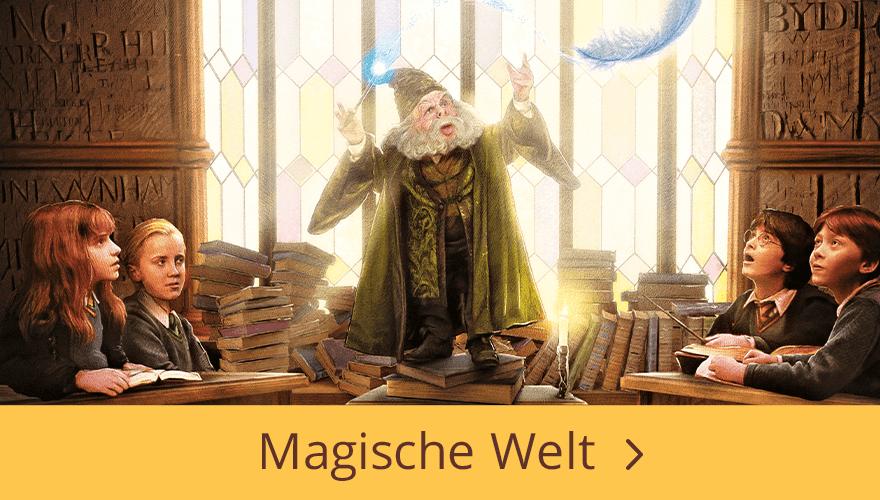 Harry Potter Magische Welt Bücher